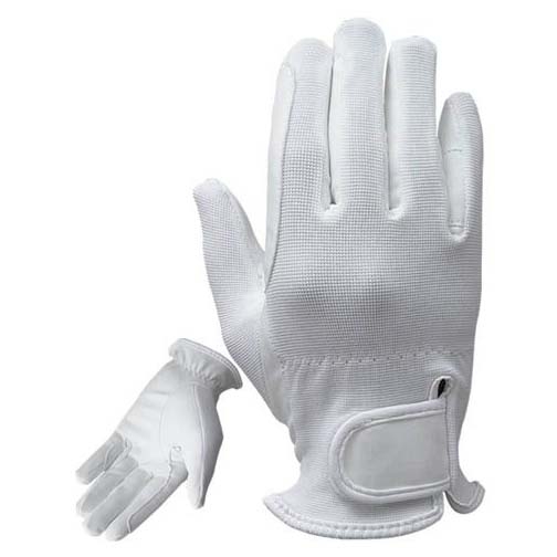 Riding Gloves 1