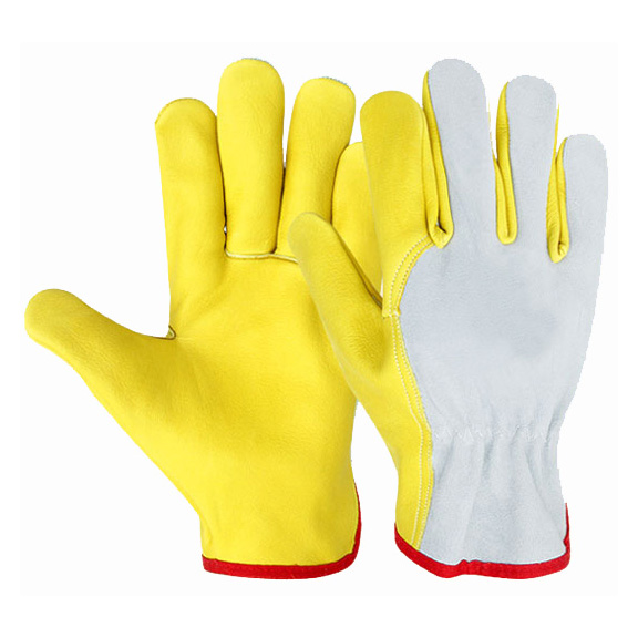 Driving Gloves 1